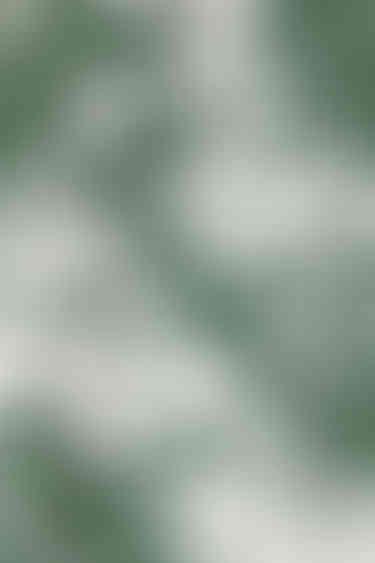 Dress 6575 Green 8