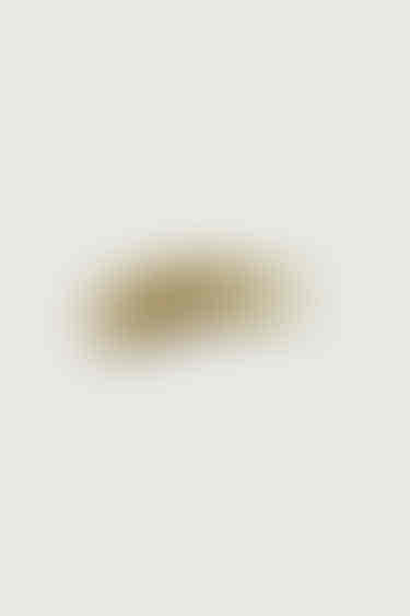 Nail Lacquer 4196 Moss 3
