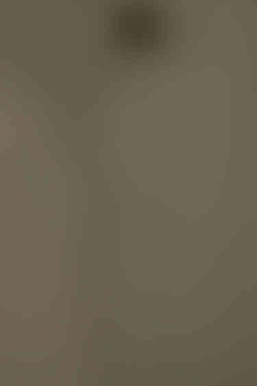 Pant 4516 Olive 6